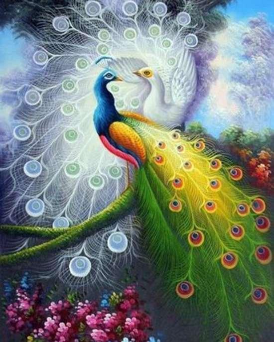 Картина по номерам 40x50 Два превосходных павлина